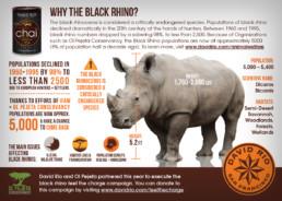 David Rio Black Rhino Infographic
